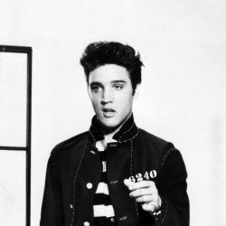 Elvis Presley : l'idole des idoles